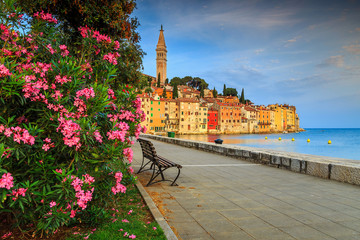 Stunning cityscape with Rovinj old town,Istria region,Croatia,Europe