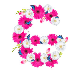 Alphabet G, flower isolated on white background. Gerber, tulips and butterfly