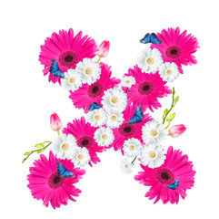 Alphabet X, flower isolated on white background. Gerber, tulips and butterfly
