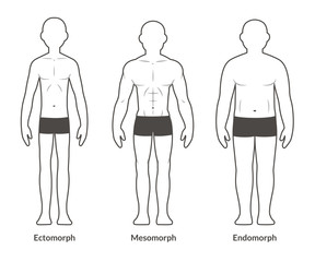 Male body type chart
