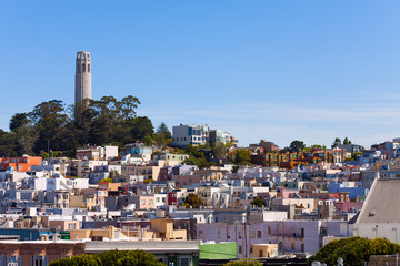 Fototapete - Panorama and Coit Tower with San Francisco view