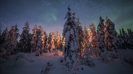 Fototapete - Campfire timelapse in winter lapland forest