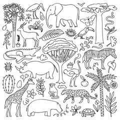 Hand drawn Africa Set