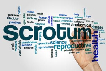 Scrotum word cloud concept