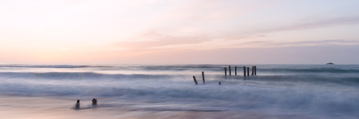 old jetty piles at St. Clair Beach in Dunedin at dawn
