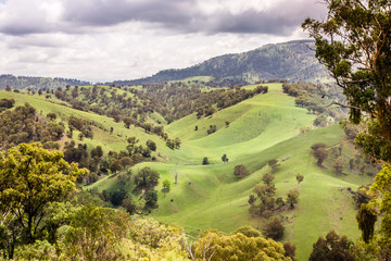 Scenic view of the countryside in the Upper Hunter Valley, NSW, Australia