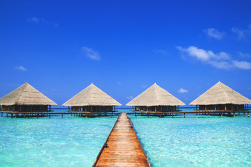 Maldives Dock Clear Water Refreshing Concept