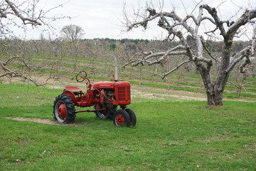 old tractor in spring orchard