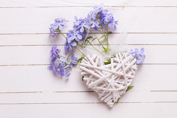 Background with  blue flowers and decorative heart on white pain