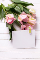 Bunch of fresh  spring  pink  tulips and empty tag on white  pai