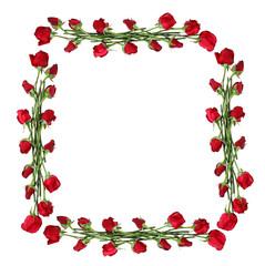 Roses frame isolated on white
