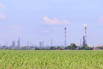 Bright green field with corn and Oil Refinery on horizon