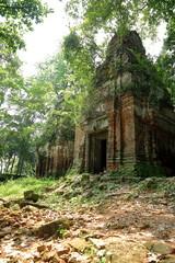 ta prohm-cambodia III