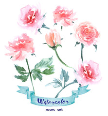 Vector flowers set. Colorful floral collection with Watercolor roses. Spring or summer design for invitation, wedding or greeting cards. Vector illustration.
