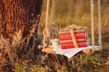 Stock of books on the swing