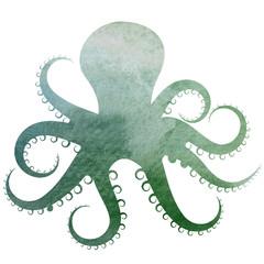 Blue Green Watercolor Octopus illustration