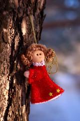 winter selebrations beautiful background