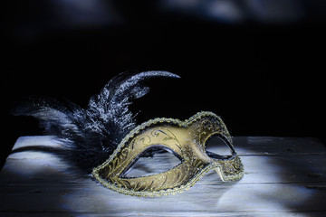 The Venetian mask with feather