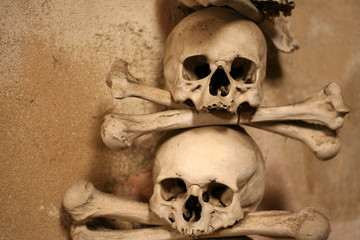 Two skulls and crossed bones