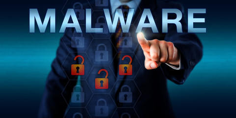 Management Consultant Touching MALWARE