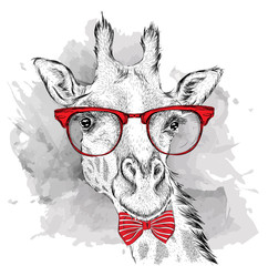 Image Portrait giraffe in the cravat and with glasses. Hand draw vector illustration.