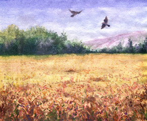 Summer view of the wheat field and flying birds.