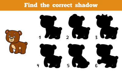 Find the correct shadow (bear)