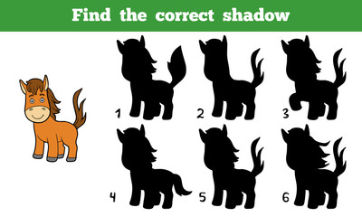Find the correct shadow (horse)