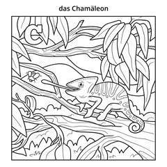 German alphabet, letter C (chameleon and background)
