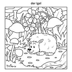 German alphabet, letter I (hedgehog and background)