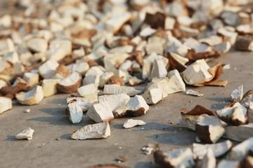 Dry cassava root