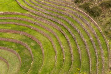 Particolare delle terrazze di Maras Moray, sito archeologico inca  nella Valle sacra, Peru
