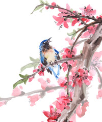 Watercolor Bird on cherry blossoms branches. Vector background.
