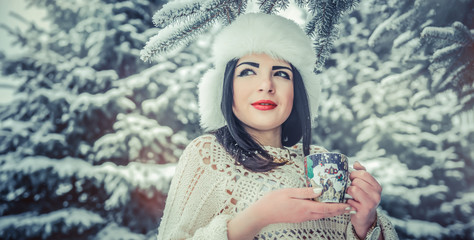 portrait beautiful girl in snowy forest, toned image