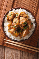 Japanese oyakodon and rice in a bowl. vertical top view