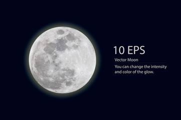vector moon Wall mural