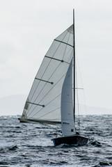 Kleines Segelboot mit vollen Segeln im Wind