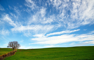 panorama di campagna con cielo e nuvole