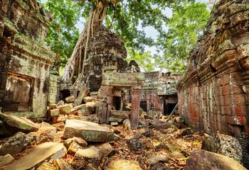 Fototapete - Green trees growing among ruins of Preah Khan temple in Angkor