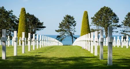 Photo sur Plexiglas Cimetiere Alignement de croix dans le cimetière militaire de Colleville-sur-Mer, Normandie, France. Avec la mer et des arbres en arrière-plan.