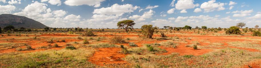 Photo sur Plexiglas Afrique Tsavo East National Park, Kenya