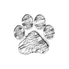hand drawn doodle of animal footprint, Vector illustration.