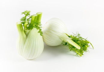 Fresh, organic fennel isolated on white background
