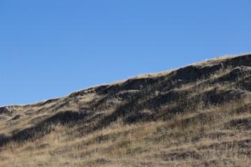 Shaggy Grassy Hill