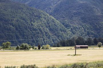 Mountainside Farmland