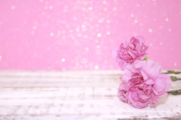 Pink Carnation flowers on rustic white wooden table.