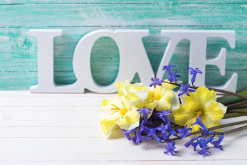 Fresh yellow and blue spring  flowers and word love on turquoise
