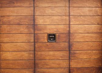 Varnished wooden door.