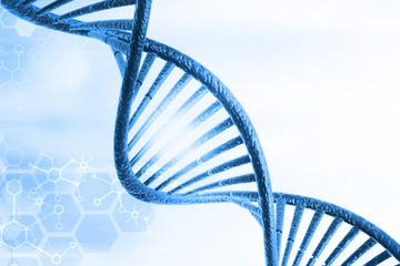 DNA molecules
