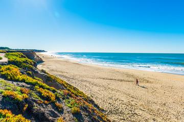 Benches facing the coastline in route 1 California , USA